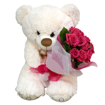 Teddy bear, roses