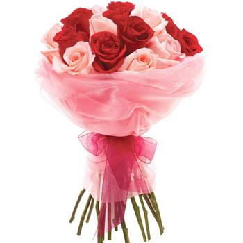 Bouquet, 21 roses