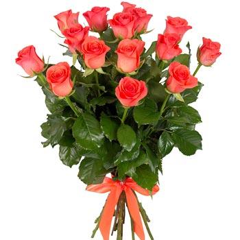Bouquet, 15 roses